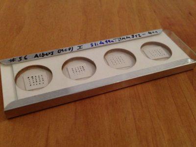 7 Schritte zum eigenen Mikrometeorit: Schritt 7 – Die Funde richtig dokumentieren und aufbewahren