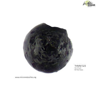 THMM523