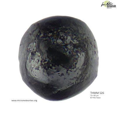 THMM526